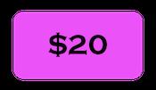$20 Ticket